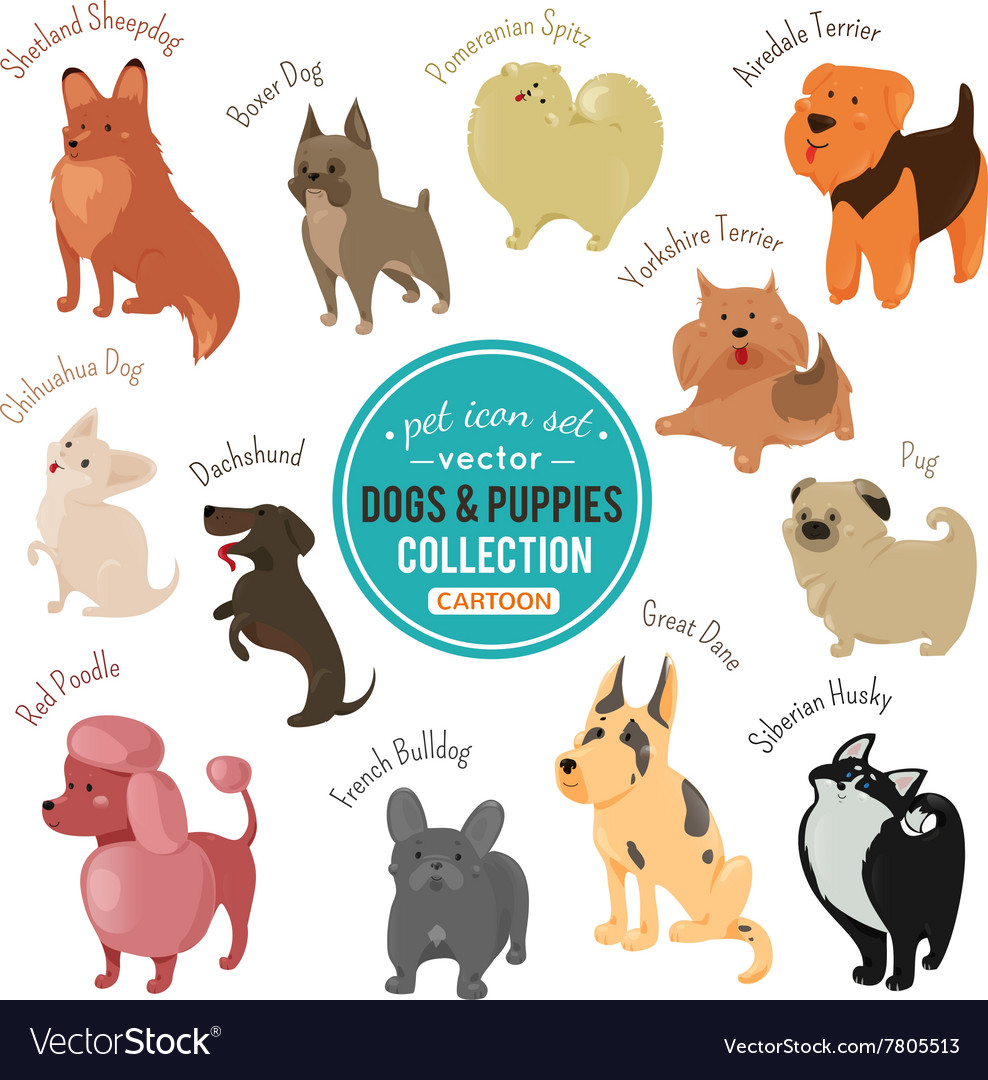 Dogs and puppies depicting different fur vector