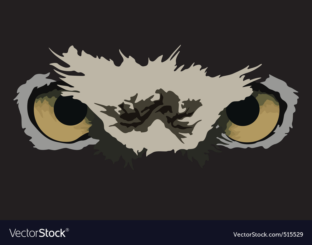 Owl eyes vector