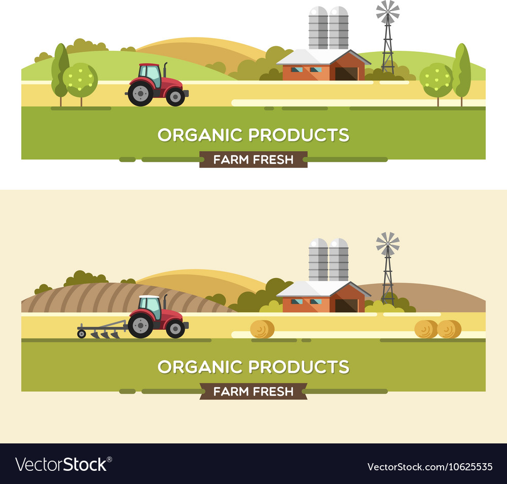 Organic products agriculture and farming vector
