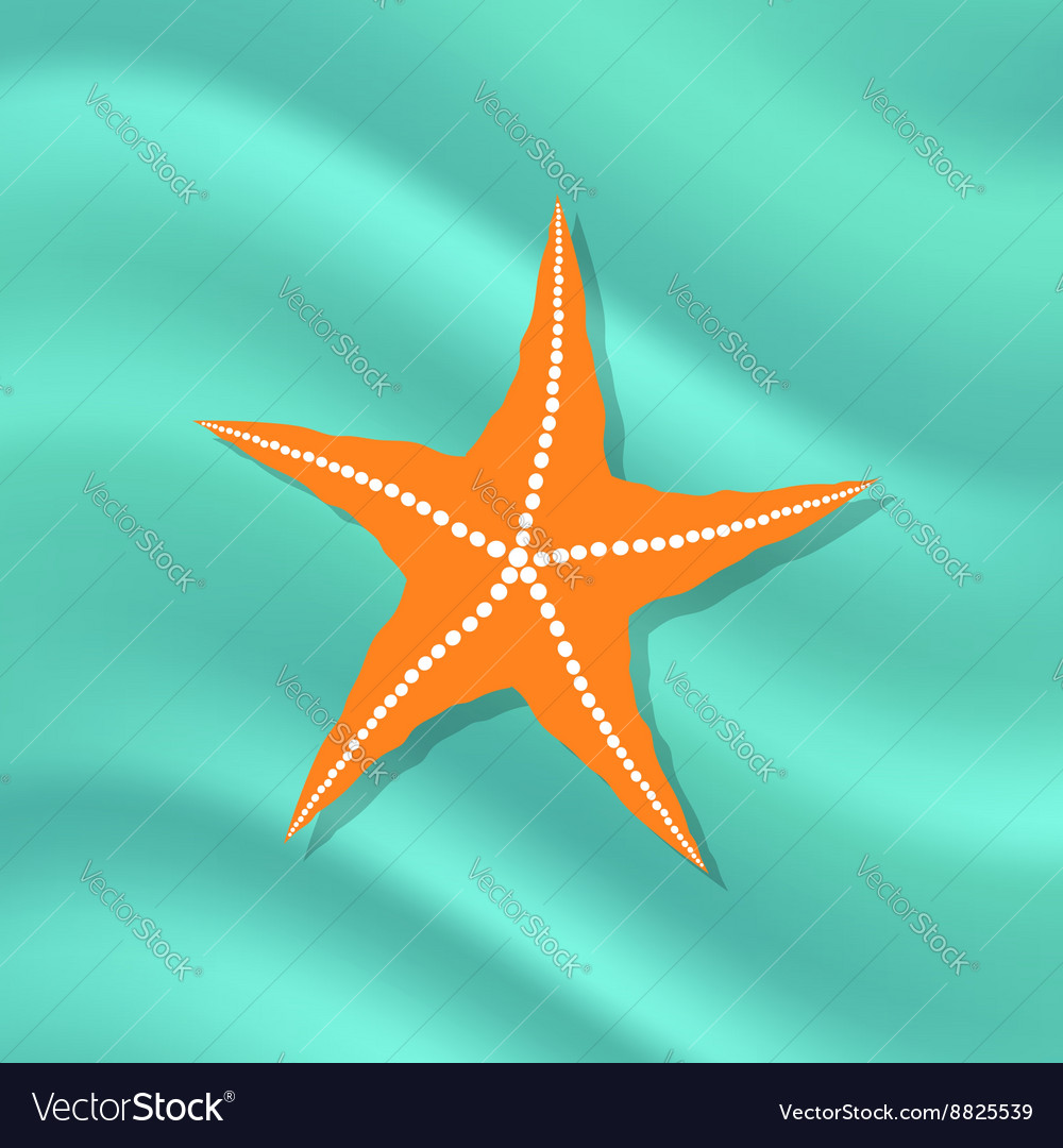 Caribbean starfish on azure background vector
