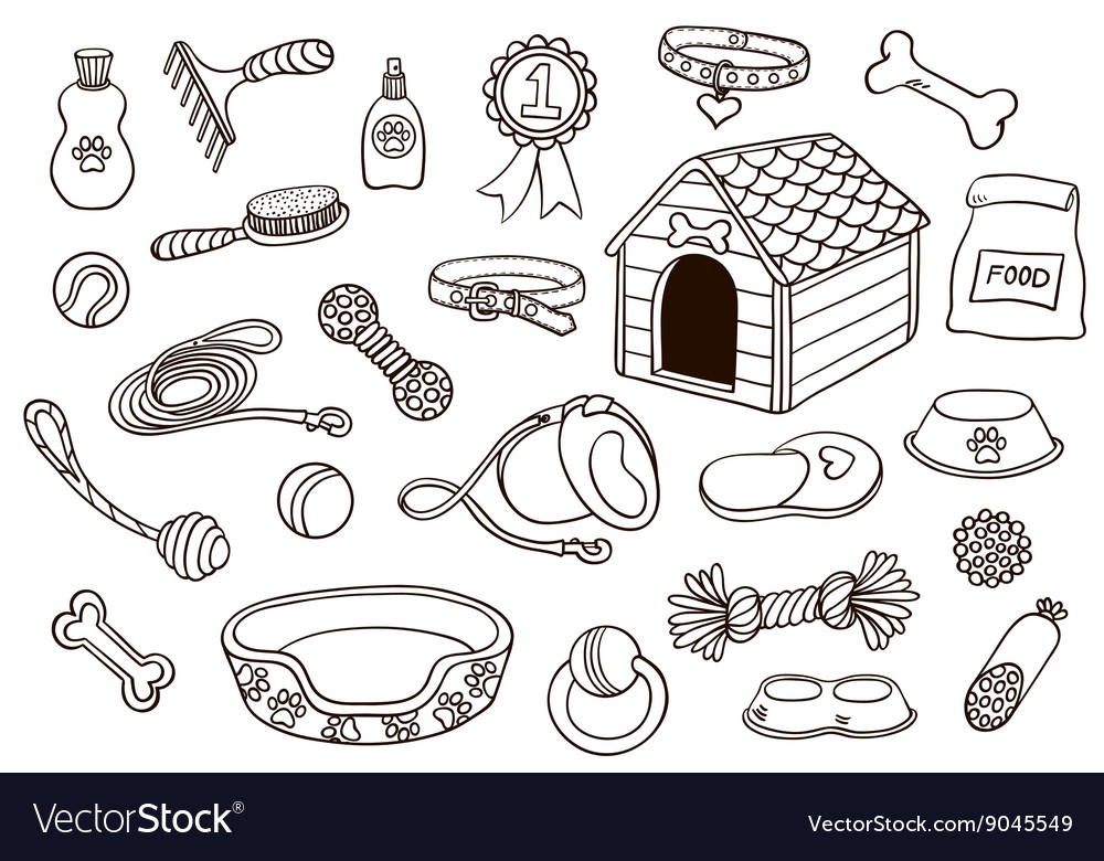 Set of accessories for dogs vector