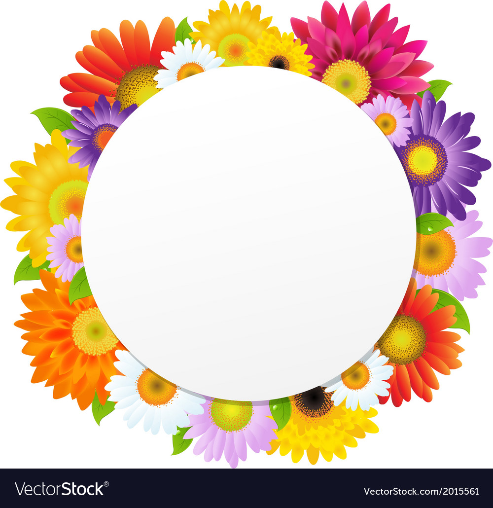 Colorful gerbers flower banner vector