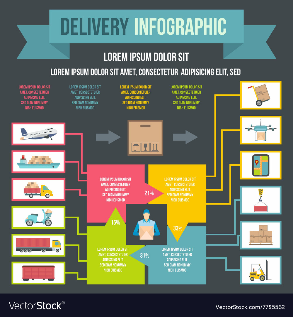 Delivery infographic flat style vector