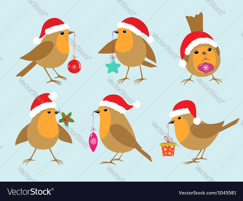 Christmas robins vector