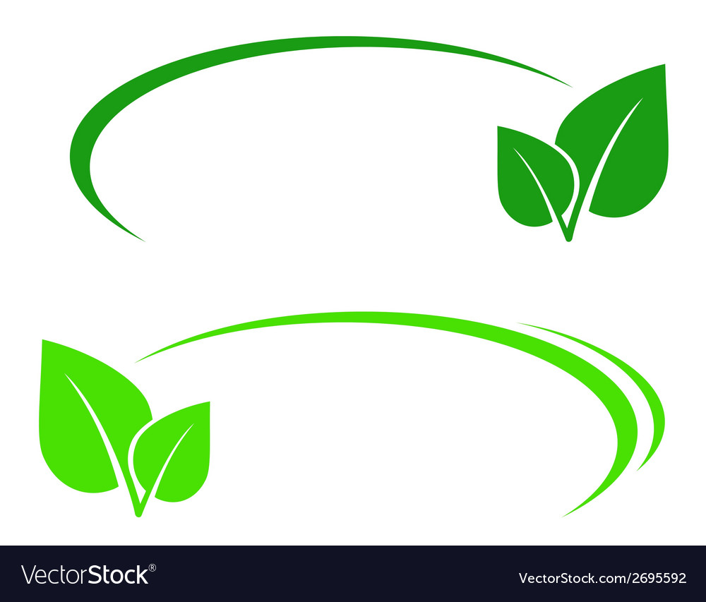 Background with leaf and line vector