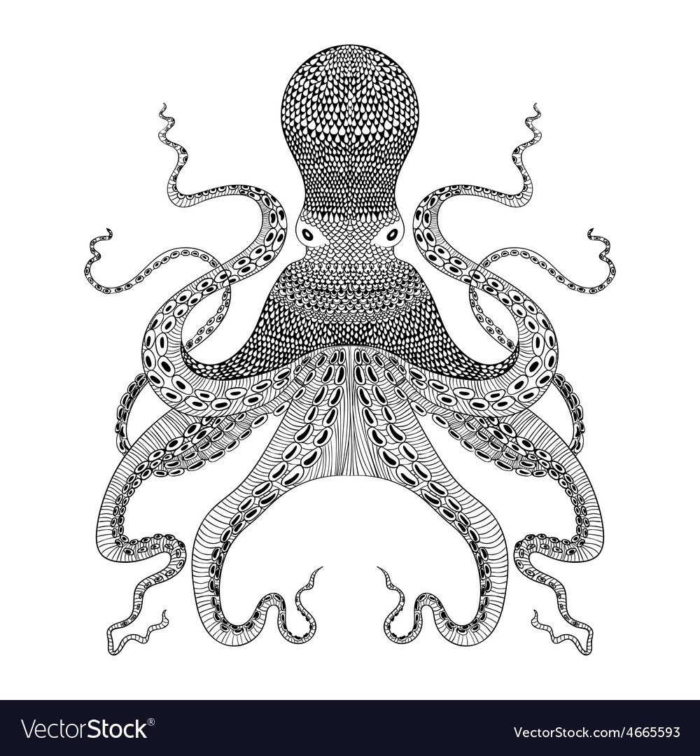 Zentangle stylized black octopus hand drawn vector