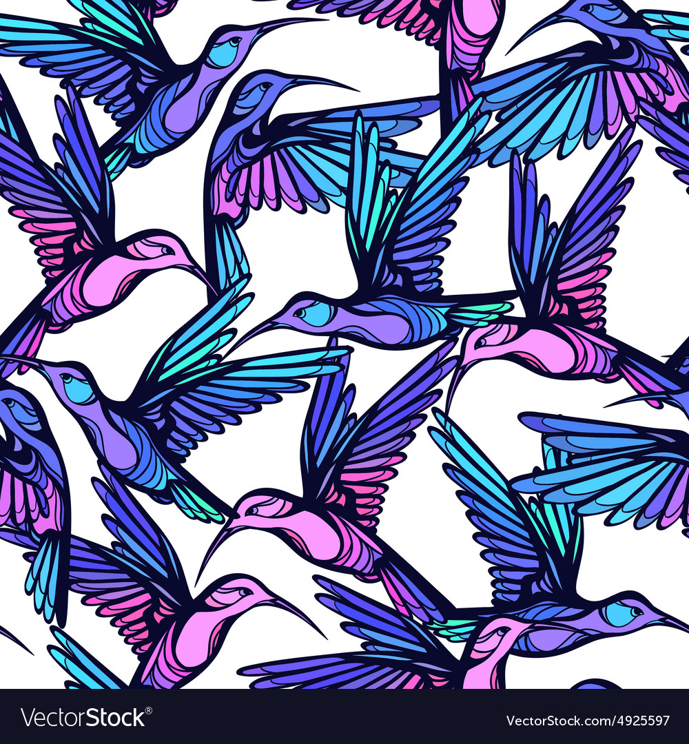 Flying tropical stylized colorful hummingbirds vector