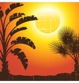 Background with palm trees silhouette at sunset vector image vector image