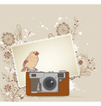 vintage camera bird vector image