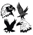 eagle emblem isolated on white vector image