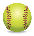 Softball isolated on white vector image