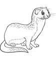 Weasel animal cartoon coloring book vector image