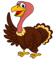 Turkey cartoon waving vector image