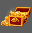 chest of gold coins icon vector image