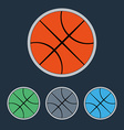 Basketball Balls Icons Set vector image