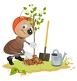 Ant Gardener planting tree Seedling fruit tree vector image