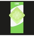 Vertical Banner of lime square slice Space for vector image