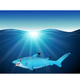 cartoon shark on the sea vector image