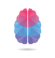 Brain abstract isolated on a white vector image