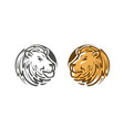 lion logo or emblem wildlife animal icon or vector image