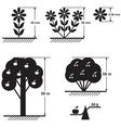 flower tree scheme vector image vector image