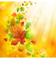 autumn background vector image vector image