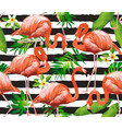 Flamingo tropical bird background seamless vector image