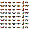 butterfly color set vector image