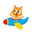 funny cat kitten pilot character flying on vector image