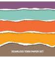 Seamless Torn Paper Concept vector image