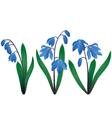 Blue snowdrops vector image vector image