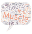 Back Pain and Tendons text background wordcloud vector image