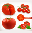 tomato vegetable 3d icon set vector image vector image