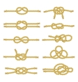 Rope Knot Decorative Icon Set vector image