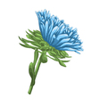 bright blue aster with watercolor effect isolated vector image