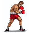 Boxer vector image vector image