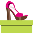 Shoes on a box vector image