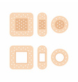 adhesive bandages vector image