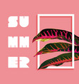 summer paradise design of tropical jungle plant vector image