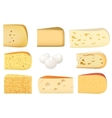 Triangular pieces of different kind of Cheese set vector image vector image