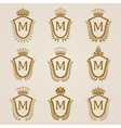 Golden shields with laurel wreath vector image
