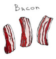 set of raw sliced bacon realistic vector image