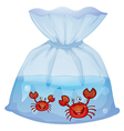 Crabs inside the plastic vector image