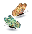 Two colorful butterflies vector image vector image