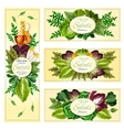 Salad leaf vegetable banner set vector image