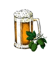 Beer glass mug with hop Sketch vector image