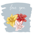 three colorfull lily flowers hand drawn on blue vector image