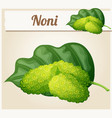 noni fruit  cartoon icon vector image