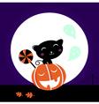 cat and pumpkin vector image