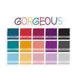Gorgeous Color Tone vector image